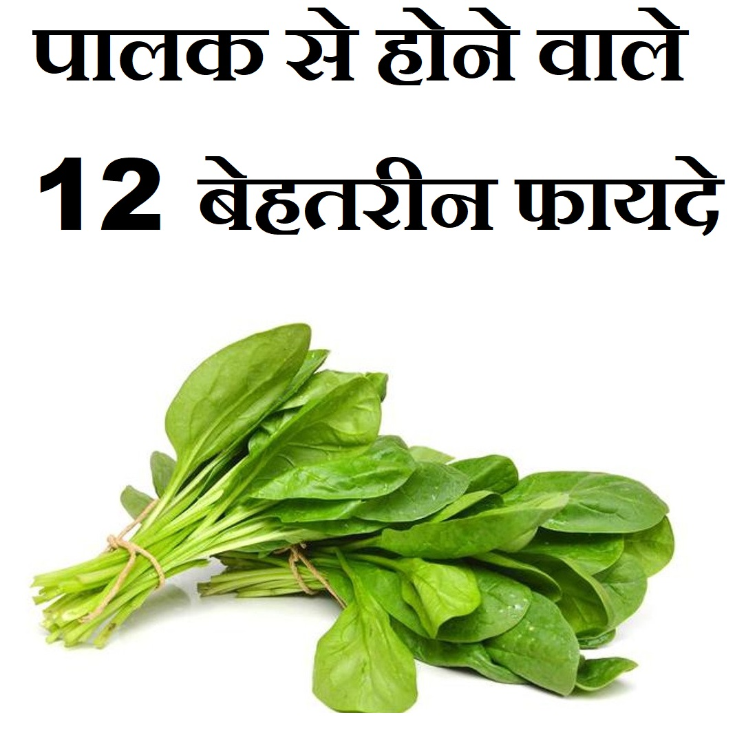 पालक से होने वाले 12 बेहतरीन फायदे,12 Benefits Of Spinach Palak In Hindi,Palak Khane ke fayde, spinach khane ke benefit,spinach side effect
