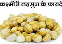 कश्मीरी लहसुन के फायदे,Kashmiri Garlic Benefits In Hindi,Kashmiri lahsun ke fayde, Kashmiri lahsun kya hai,Kashmiri lahsun ka upyog or faayde