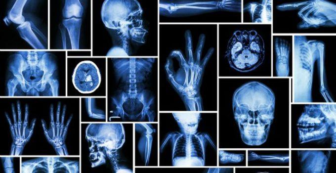 शरीर के अंगो से जुड़े हुए भ्रम व वास्तविकताएँ, Body Parts Real Facts Myth In Hindi,Body ke ango se jude sach aur juth, sharir ke ango ke facts
