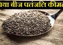 चिया बीज प्राइस पतंजलि, Patanjali chia seeds price in hindi,chia beej patanjali kimat, चिया बीज price patanjali,chiya ke beej patanjali price