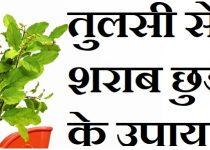 तुलसी से शराब छुड़ाने के उपाय,Tulsi Se Sharab Chhudane Ke Upay,शराब छुड़ाने का रामबाण उपाय,Remedies to get rid of alcohol from Tulsi in hindi