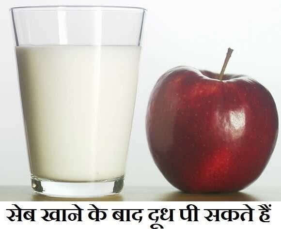 सेब खाने के बाद दूध पी सकते हैं, Apple khane ke baad dudh pina,seb khane ke fayde,seb khane ke bad dudh pi skte hai, apple after milk in hindi